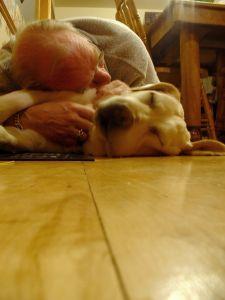 Idealna podłoga dla właścicieli psów